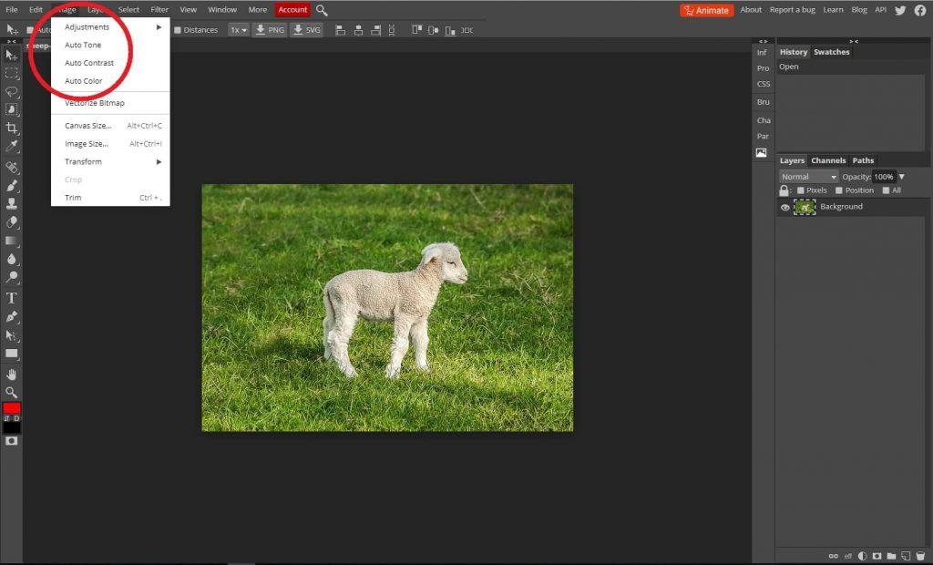Képszerkesztés alapjai_automatikus képjavítás